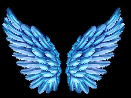 Free Image On Pixabay Blue Wings Butterfly Flight In 2021 Wings Drawing Wings Wallpaper Foxy Wallpaper