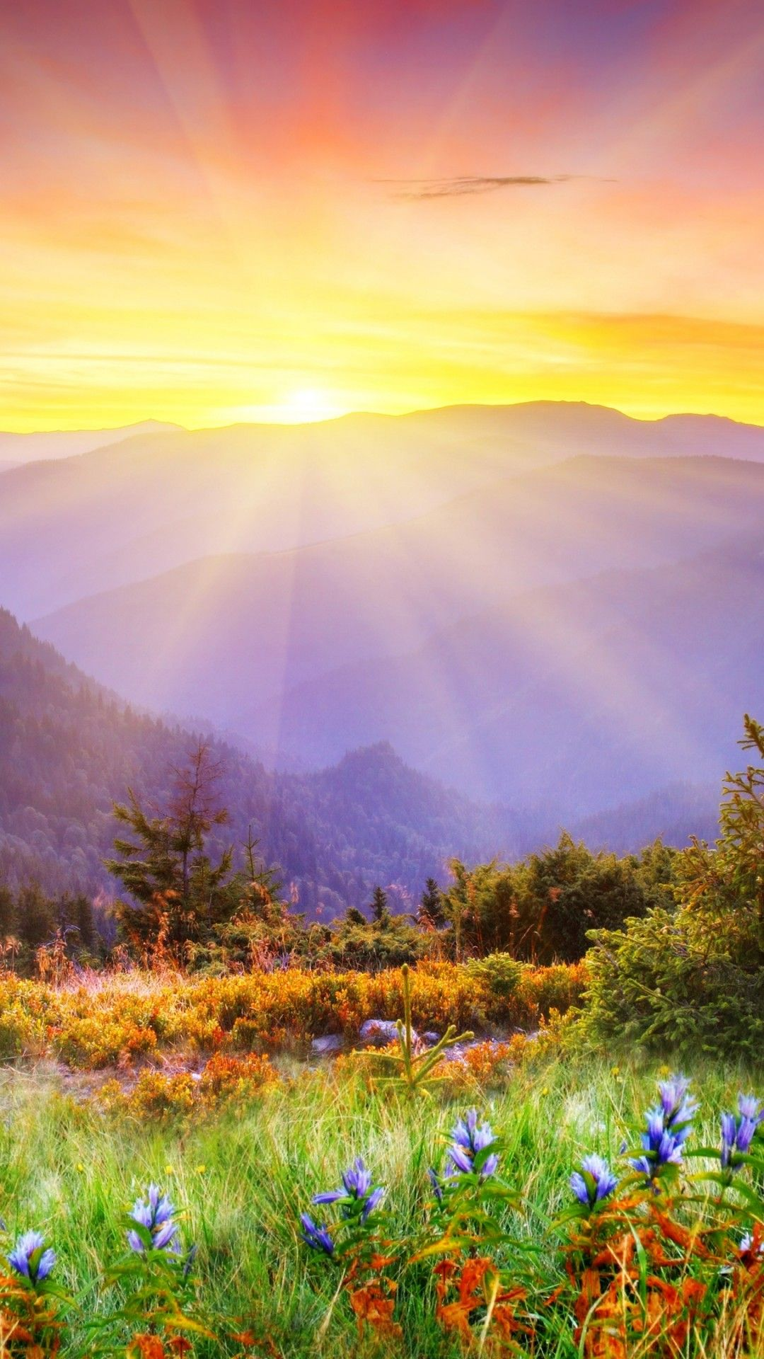 Magical Landscape 4k Ultra Hd Wallpaper 4k Wallpaper Net Landscape Photography Beautiful Landscapes Sunrise Wallpaper