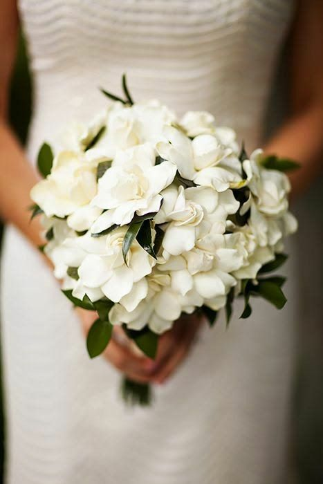 Timeless Bridal Bouquet Of White Gardenias Greenery And Foliage Gardenia Wedding Gardenia Wedding Bouquets Wedding Flower Arrangements