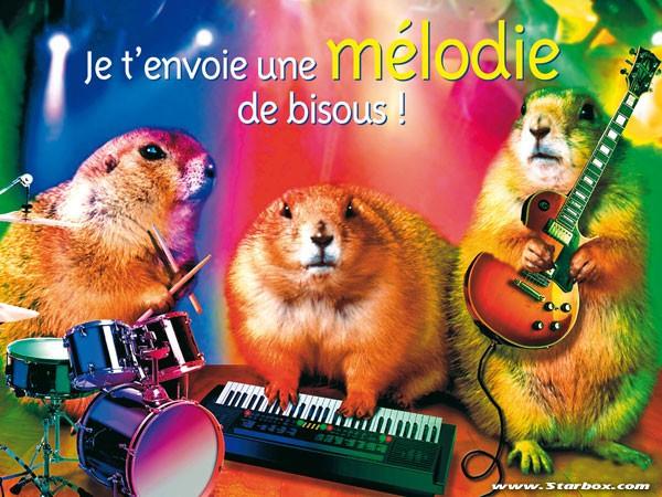 carte anniversaire musicale gratuite Carte D'anniversaire Drole Virtuelle Gratuite New Carte De Voeux