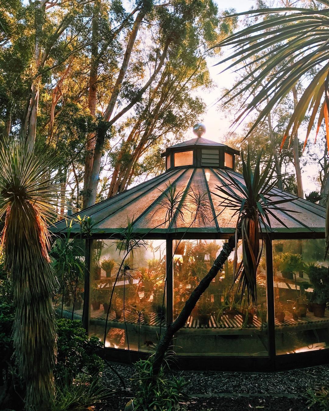 Ganna walska lotusland | Lotusland | Pinterest