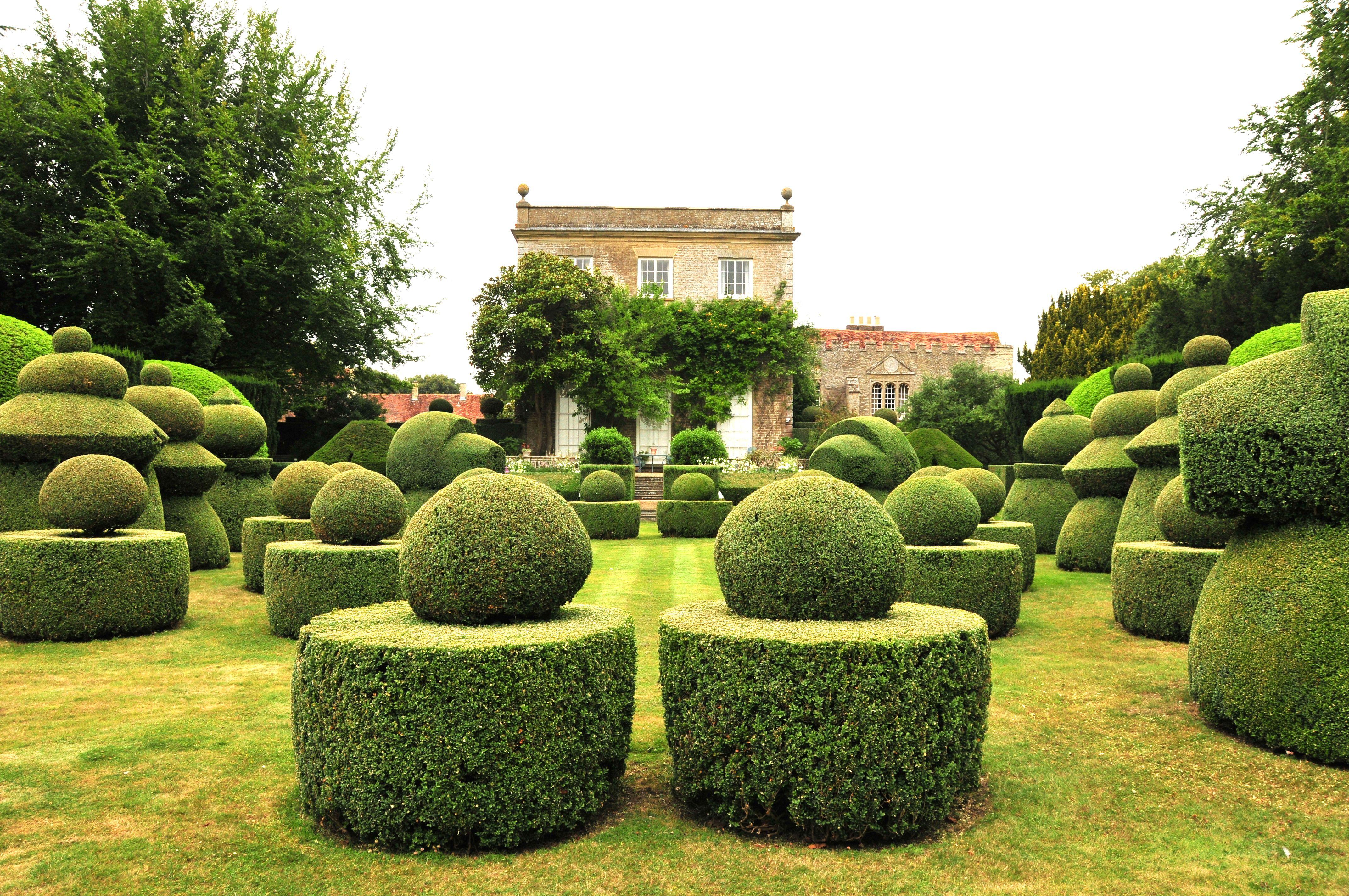 Haseley Court Oxfordshire Topiary Garden Garden Design Topiary
