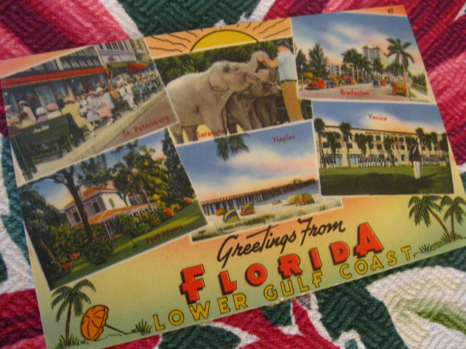 Vintage florida postcard greetings from floridas lower gulf vintage florida postcards items similar to vintage florida postcard greetings from floridas kristyandbryce Image collections