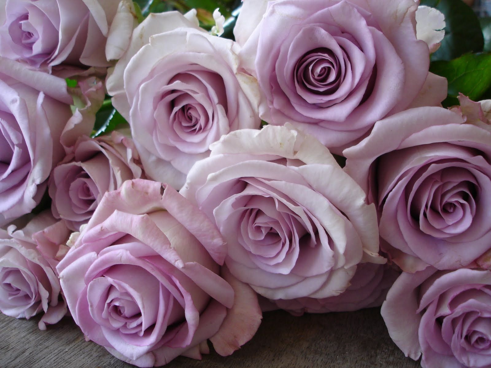 Dusky Pink Roses Wedding Inspiration Pinterest Pink Roses