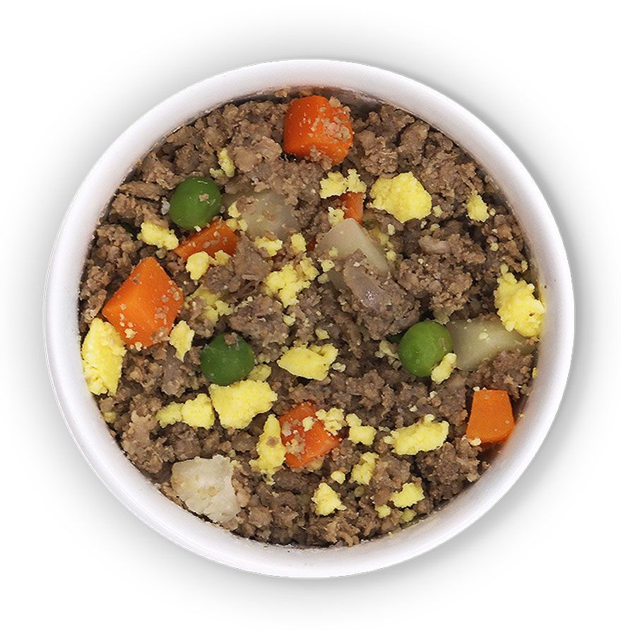 Fresh food for dogs, delivered. in 2020 Dog food recipes