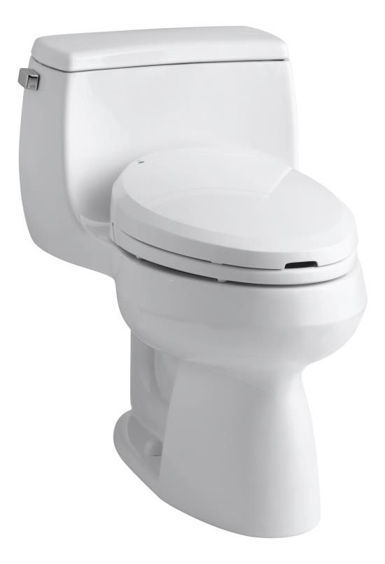 Toilet Bidet Combo From Kohler Kohler