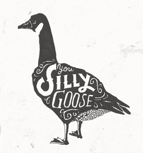 54165326 You silly goose | Typography | Typography design, Illustration art ...