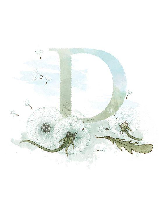 Letter D, Dandelion, Nature Alphabet Initial Nursery Art 8.5 x 11