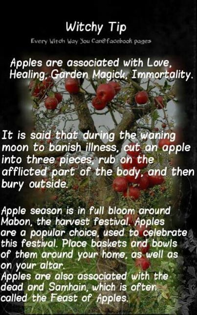 Mabon Celebration Ideas #maboncelebration Mabon Celebration Ideas #maboncelebration Mabon Celebration Ideas #maboncelebration Mabon Celebration Ideas #maboncelebration
