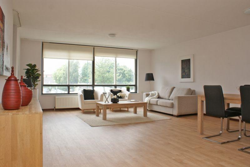 Mooi voorbeeld van een strak gestylde woonkamer - Verkoopstyling ...