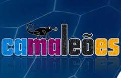 Resultado de imagem para camaleões