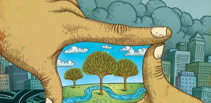 Folletos Para Proteger El Medio Ambiente Buscar Con Google Medio