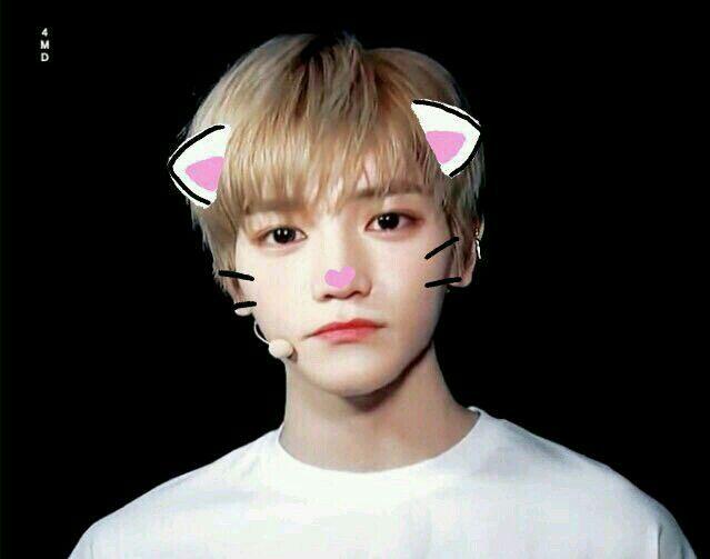Jenga •Jaeyong•