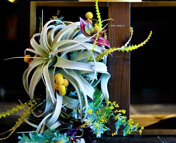 25 Dining Table Centerpiece Ideas Dining Room Table Centerpieces Plant Centerpieces Table Centerpieces