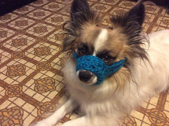 Dog Muzzle Crochet In Color Of Choice Training Bark Muzzle Dog