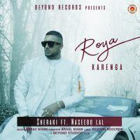 Roya Karenga Naseebo Lal Sheraki Mp3 Song Download Riskyjatt Com Mp3 Song Songs Mp3 Song Download