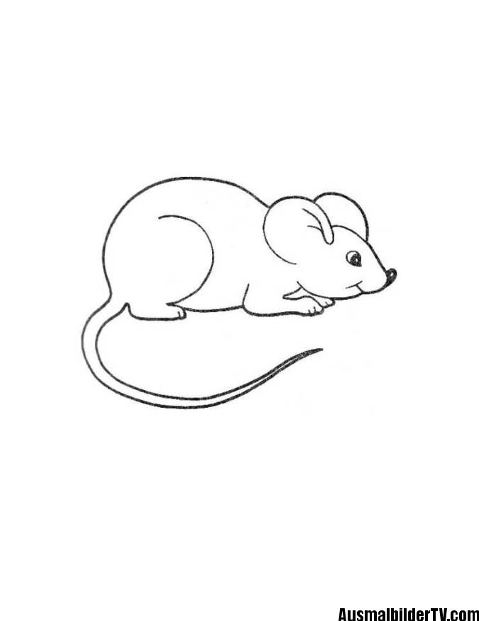 Ausmalbilder Maus Coloring Pages Kids Mouse Animal Coloring Pages