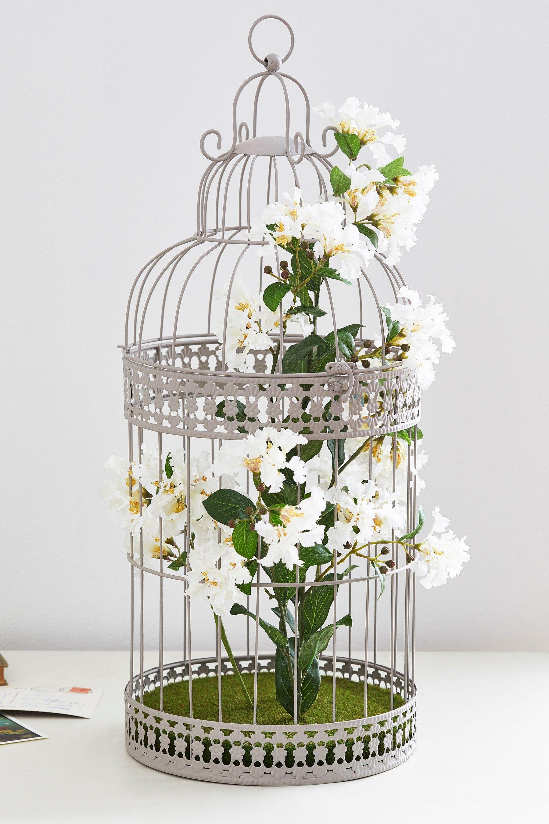 best 25 brd cage decoraton deas on pnterest.htm next large floral bird cage grey bird cage  floral  birds  next large floral bird cage grey