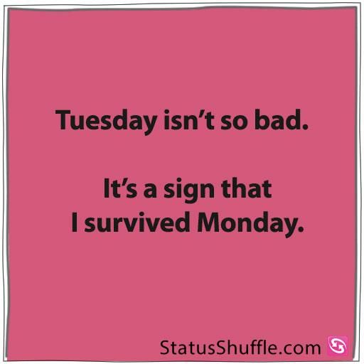 I Survived Monday Happy Tuesday Quotes Tuesday Quotes Tuesday Quotes Funny