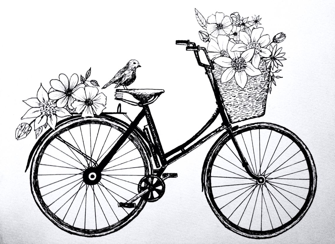 Pin by nui w on sketches bicycle drawing easy pen drawing drawings