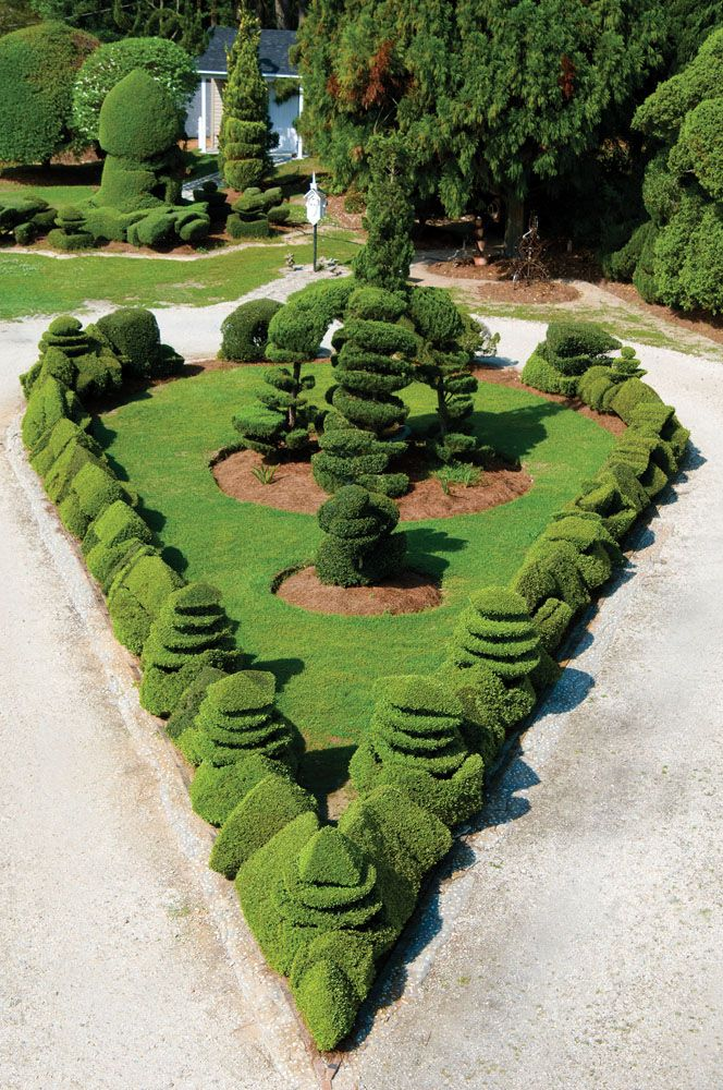 Pearl Fryar Topiary Trees 1000+ images about Pearl Fryar - Topiaries on Pinterest  Topiary garden, Topiaries and Pearls