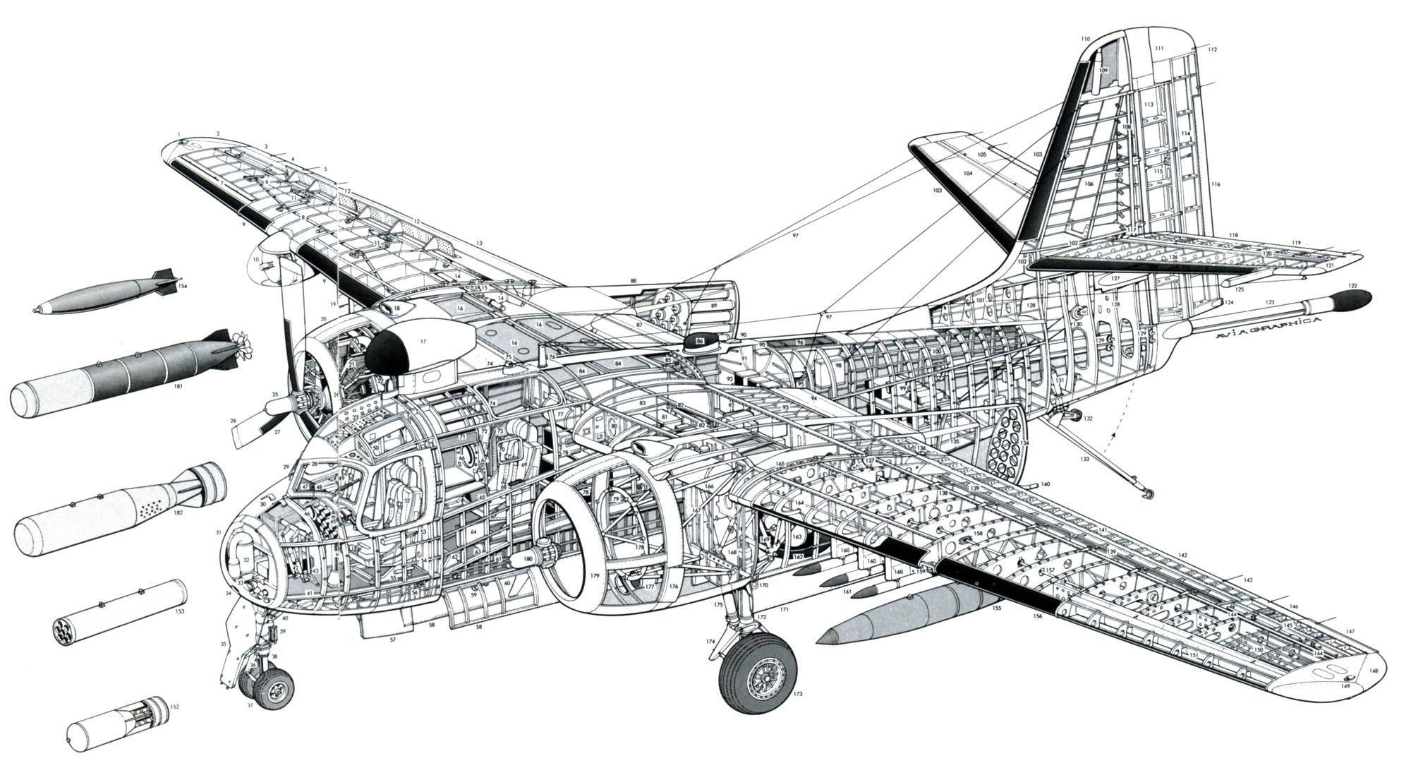 Contemporáneo Anatomía De Un Avión Motivo - Imágenes de Anatomía ...