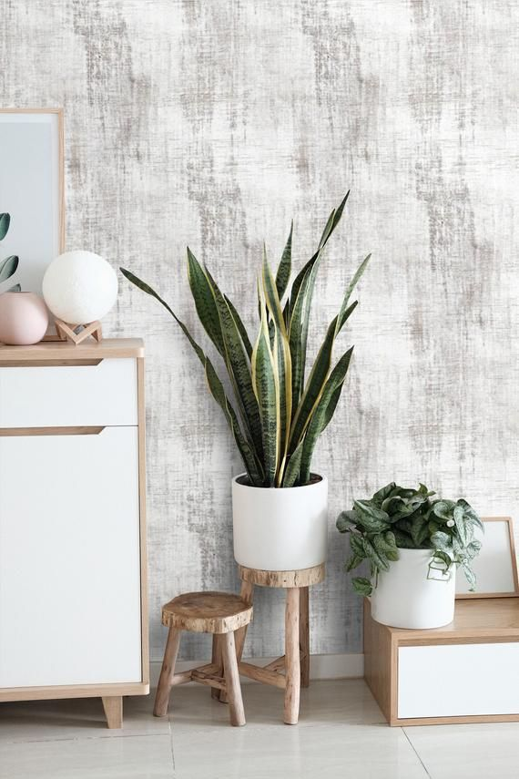 Photo of Concrete Cement Wallpaper Distressed Peel and Stick Removable Wallpaper Mural Self Adhesive Accent W