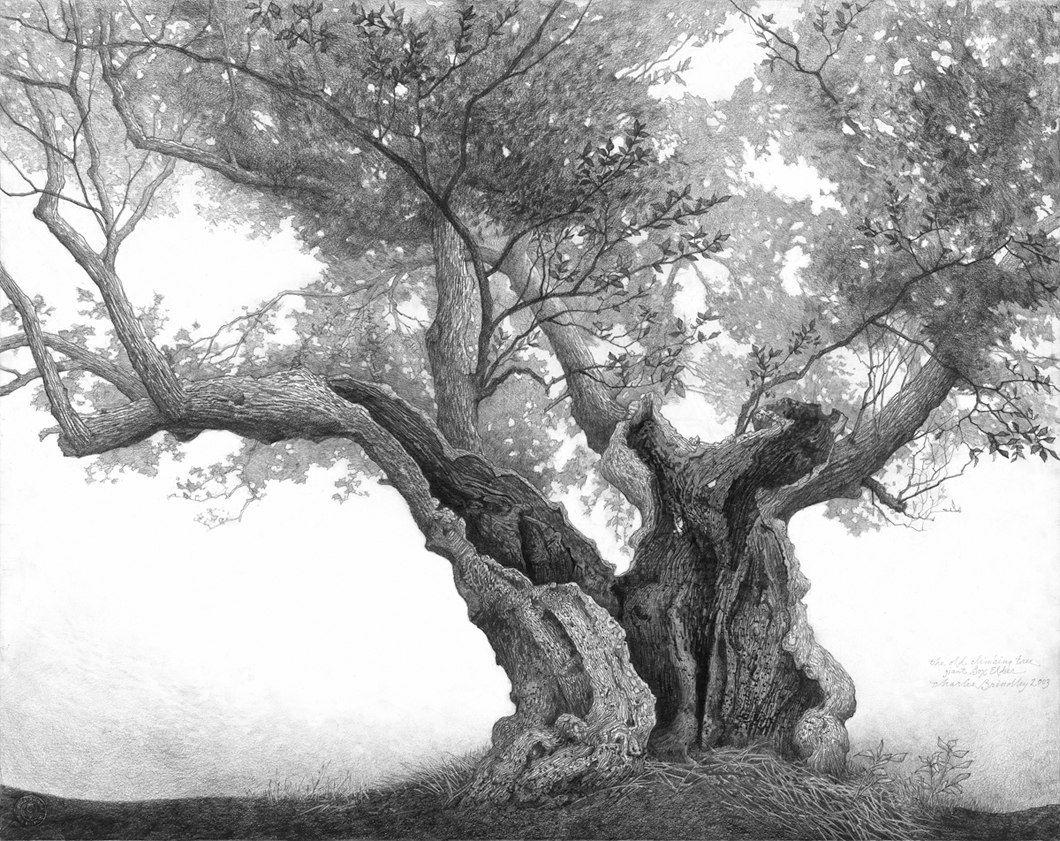 гольфом старинное дерево рисунок для