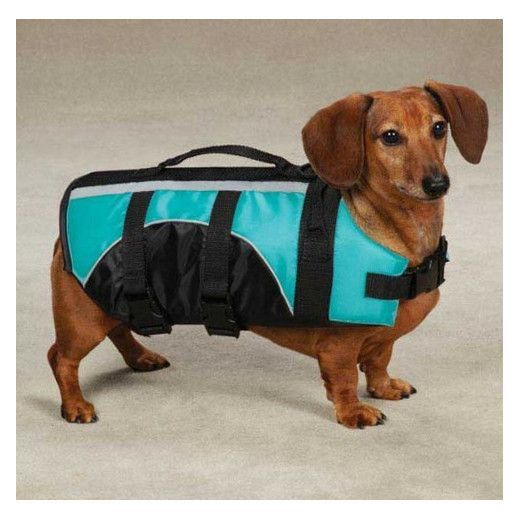 Aquatic Dog Life Jacket By Guardian Gear Camp Hike Backpack