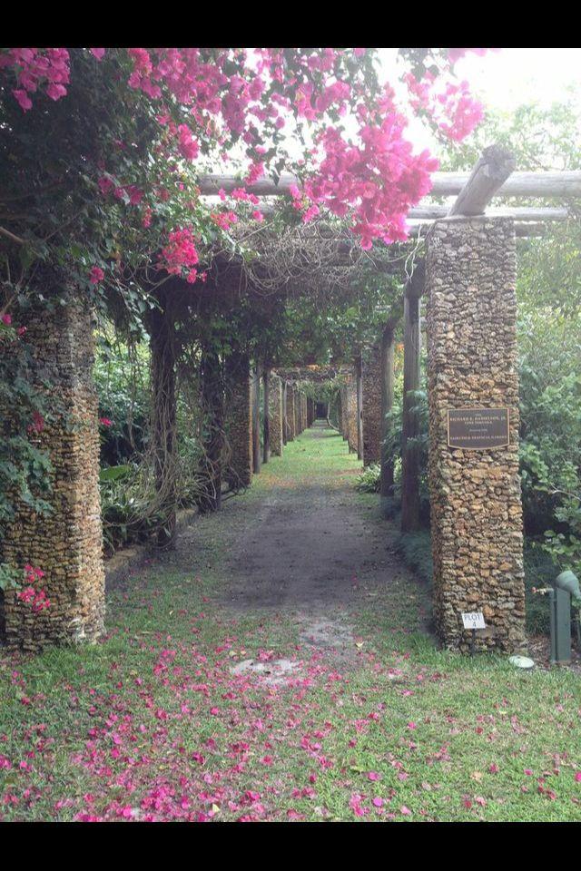Miami Fairchild Tropical Garden Botanical gardens near
