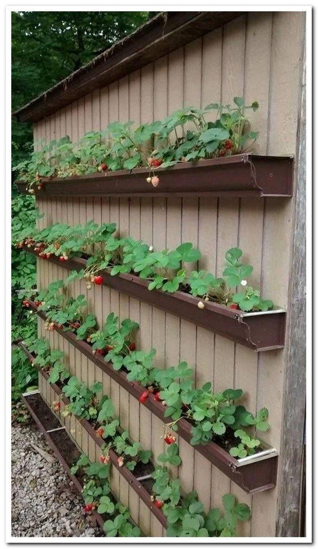 45 Hottest Diy Garden Design Ideas To Beautify Your Garden Decoration