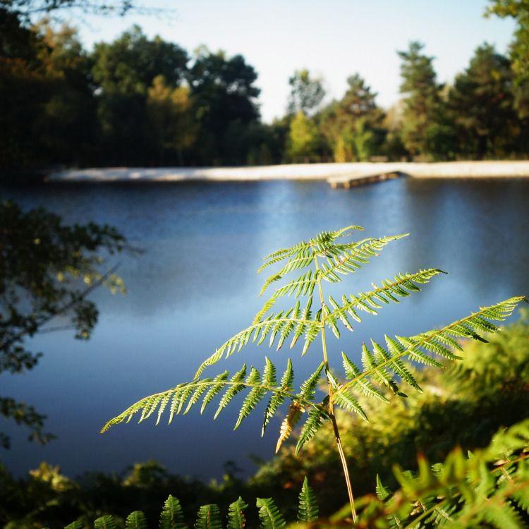 Camping avec piscine lac et activit s sportives camping - Camping dordogne avec piscine et lac ...