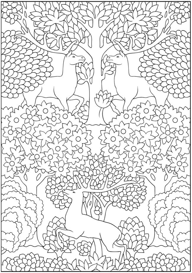 Welcome to Dover Publications | Growed-up coloring | Pinterest ...