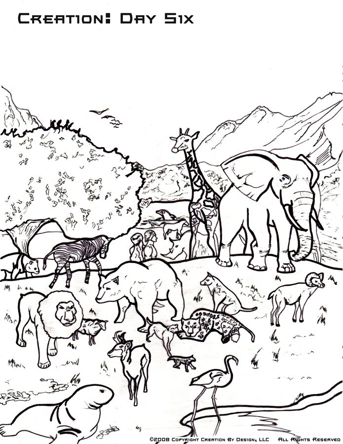 Free Coloring Page Creation Day Six Creation Coloring Pages