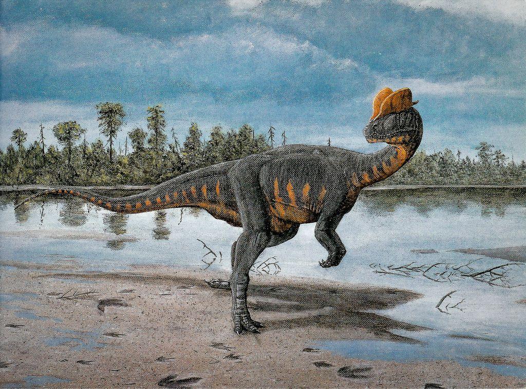 дилофозавр картинки в юрском периоде для