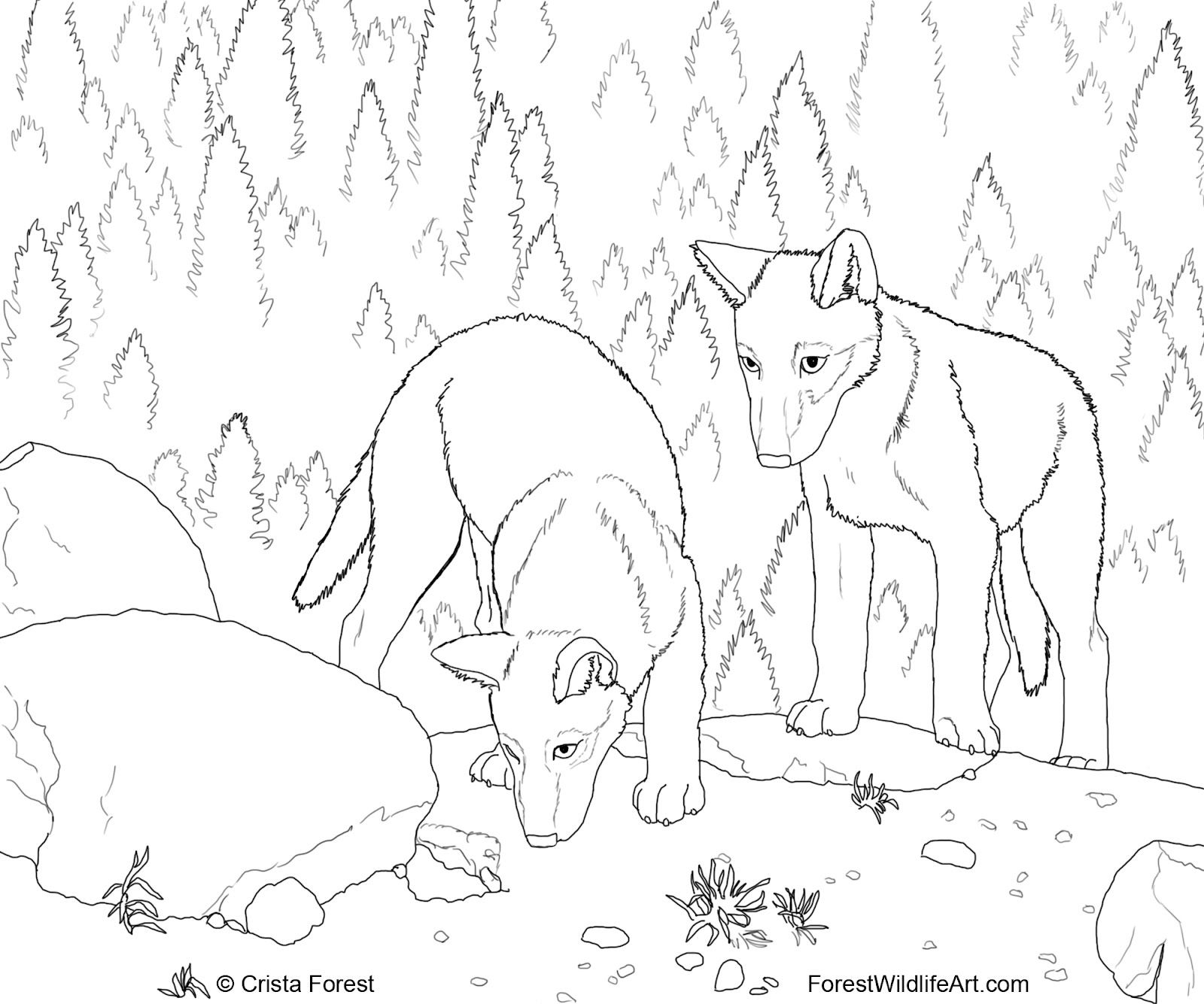 Painting pages to print - Cute Wolf Coloring Pages Forest Wildlife Art Wolf Pups Coloring Book Page