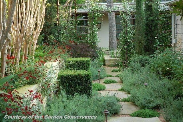 Digging | Austin gardener/designer chronicles the creation of her ...
