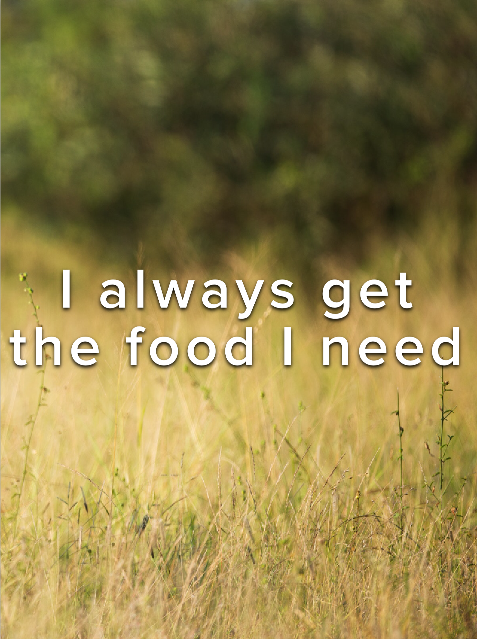 I ALWAYS get the food that I need. . Lr health affirmation