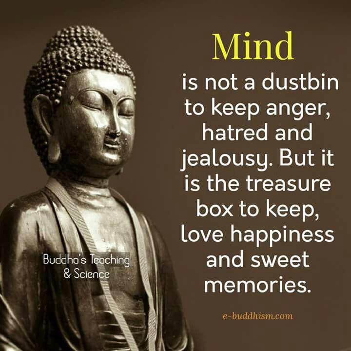 Quotes & Love