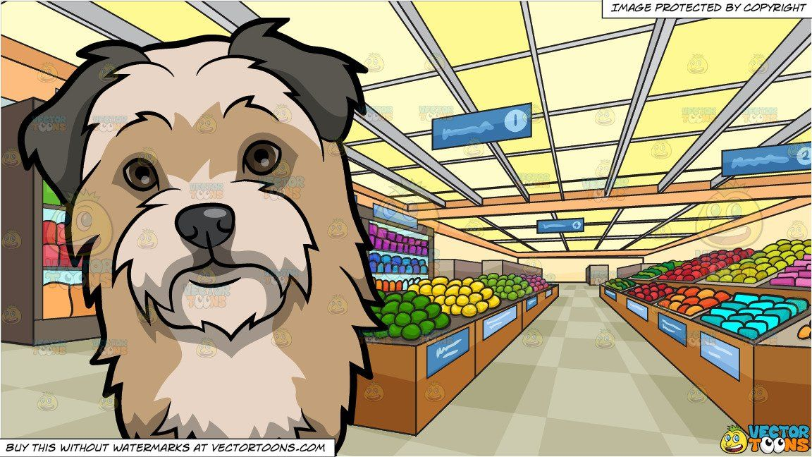A Curious Chorkie Dog And Inside A Brightly Lit Grocery Store