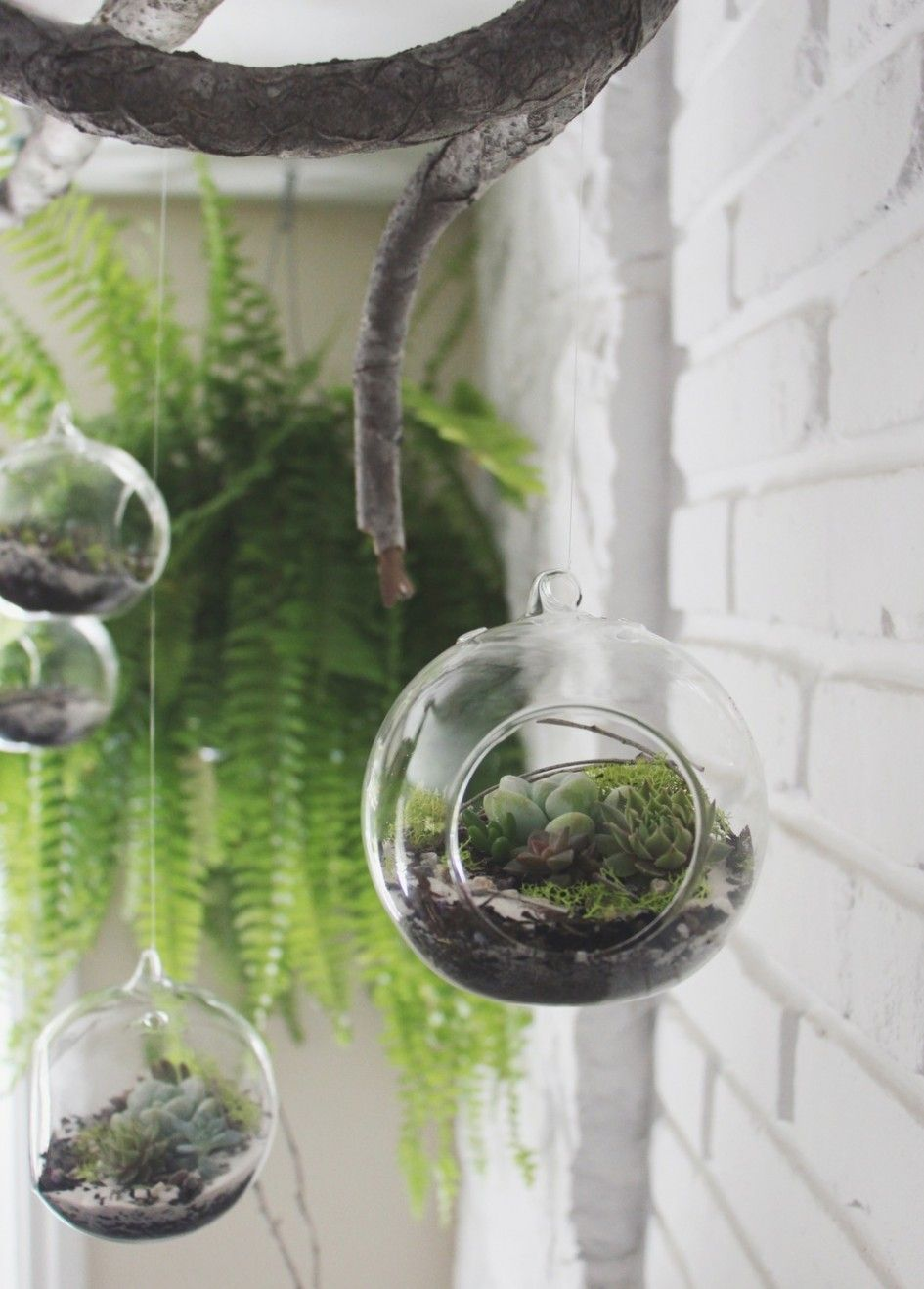Glass hanging terrarium tube planter hook bottoms flower vase