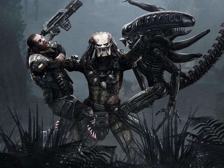 Fantasy Images Predator Google Search Aliens Versus Predator Alien Vs Predator Predator Movie