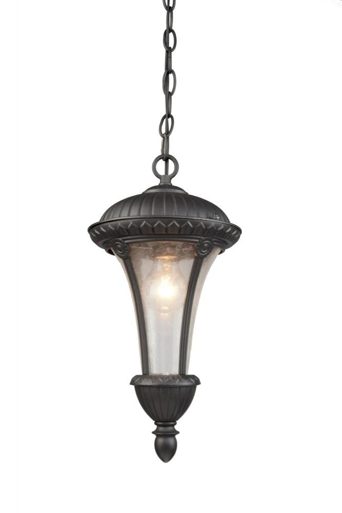 One Light Seeded Clear Glass Graphite Hanging Lantern : AC8035GR | Southern Lights