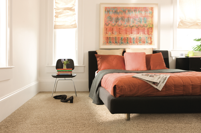 """A soft carpet with a little texture makes the clean lines of a modern room feel a little bit more causal. Try """"Time of Your LIfe"""" from Carpet One's Relax, it's...Lees line. http://www.carpetone.com/carpet/relaxitslees/timeofyourlife/crystalline/12ft.aspx"""
