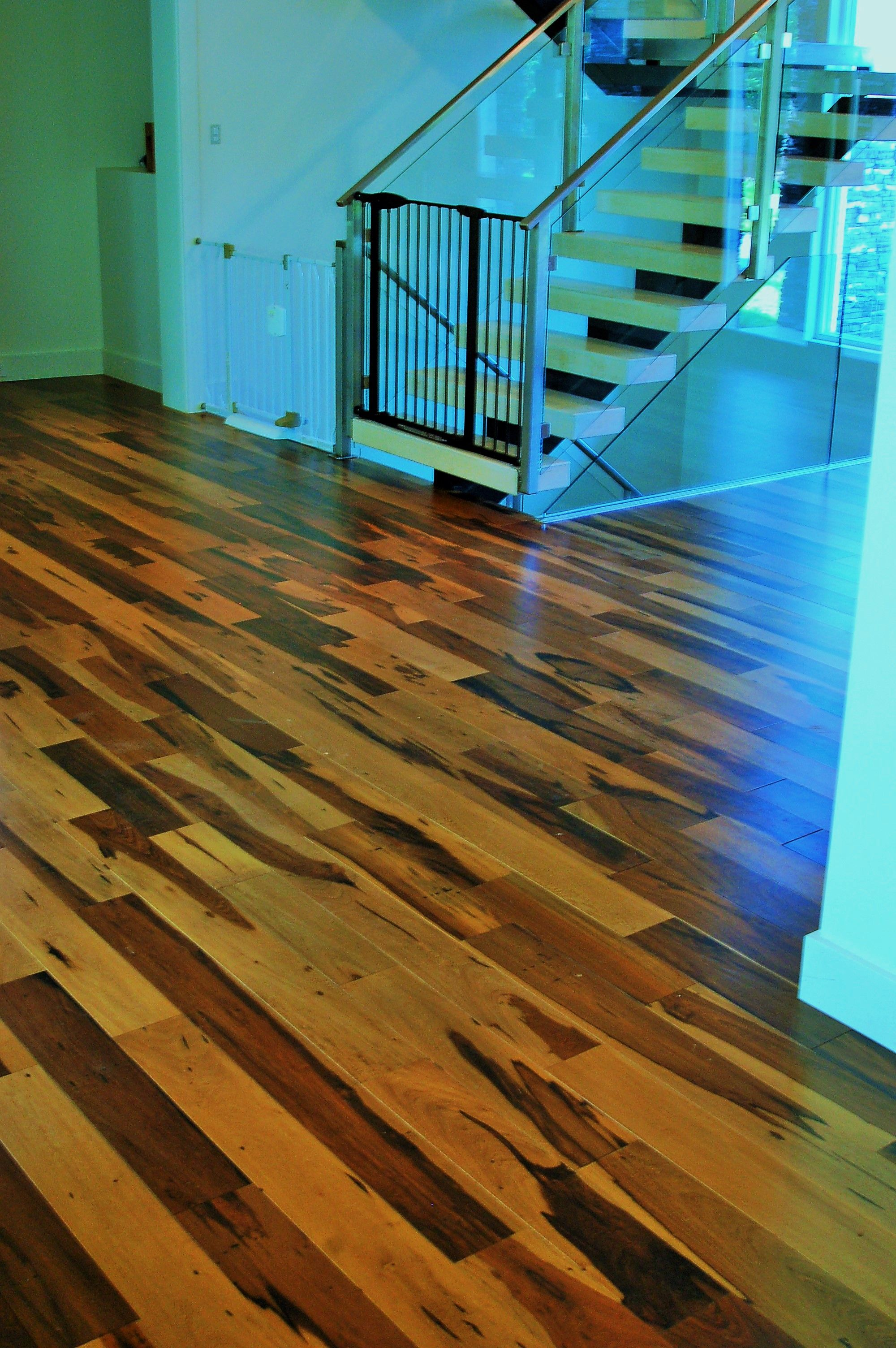 flooring pecan goldenhardwoodfloors tel com hardwood cmapleoak maple floors csl floor golden