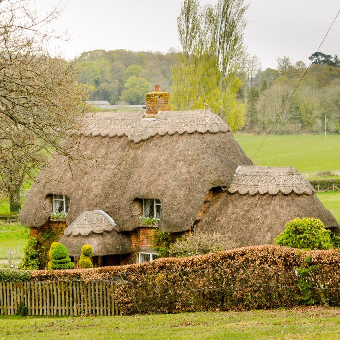 Cottage Garten: Gestaltungsideen Für Einen Romantischen Garten Im