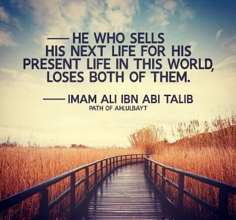 Pin by Syeda Nayab Zahra on A pearl of wisdom | Imam ali