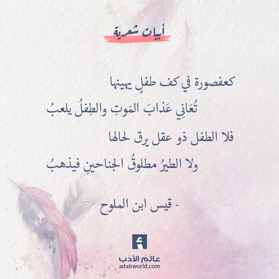 عالم الأدب اقتباسات من الشعر العربي والأدب العالمي Wisdom Quotes Life Words Quotes Life Lesson Quotes