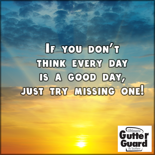 Every Day Is A Goodday To Be Alive Whether The Sun S Shining Or Not Positivity Day Good Day
