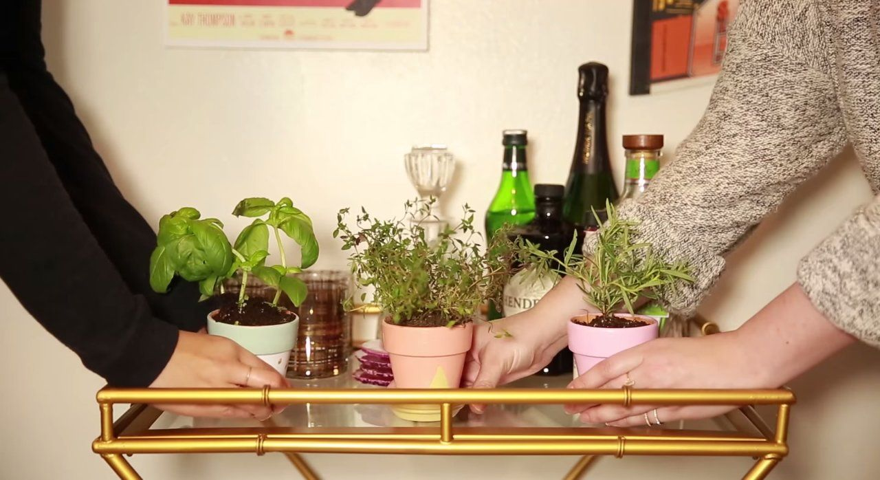 Hortinha de temperos no bar. #barcart #carrinhodechá #bar #plantas #horta #temperos #spices